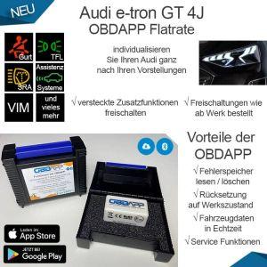 Audi e-tron GT 4J OBDAPP Flatrate